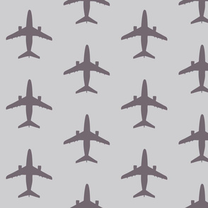 light_grey_dark_planes