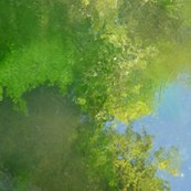 Rreflections_in_pond__giverny_fatqtr_18h_shop_thumb