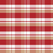 Anne's Plaid