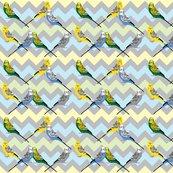 Rrchevron-parakeets-multi2_shop_thumb