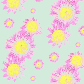lightflowers