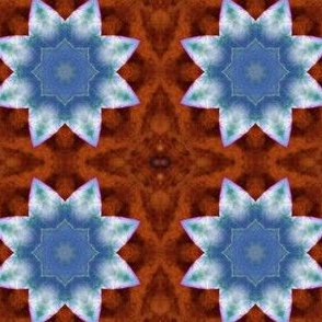 Cabbage Star