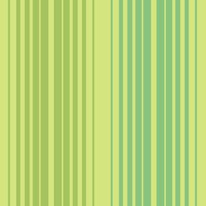Linear in Ginchy Green