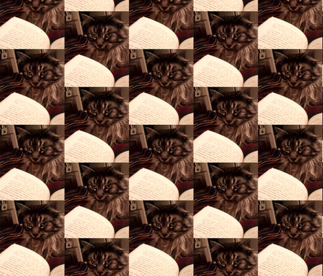 Bookcat fabric by krussimages on Spoonflower - custom fabric