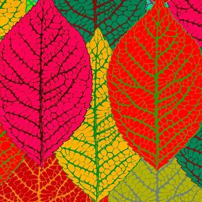 Aspen leaves extra large