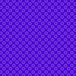 Snow_Rosettes_on_Blue-violet