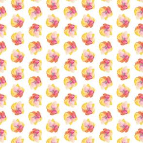 Amapolas4 - Poppies4