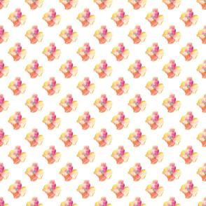 Amapolas5 - Poppies5