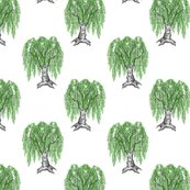 Rweeping_birch_on_white_shop_thumb