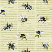 Rr0_bumblebee5small-bigbees_shop_thumb