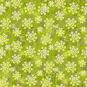 Verbena Green