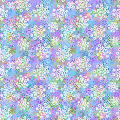 Verbena violet