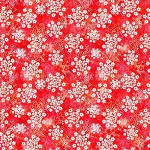 Verbena red floral