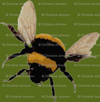 bee's / olive