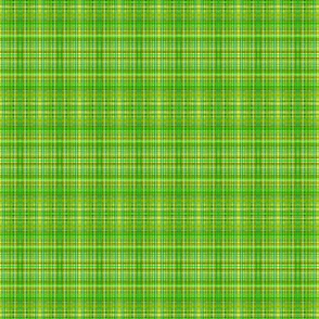 Camping green-yellow plaid