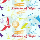 Rrevolution_of_flight1_shop_thumb