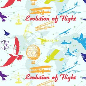 Evolution of Flight1