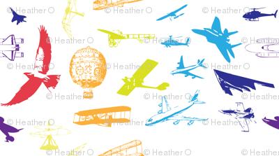 Evolution of Flight2