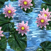 Rwaterlilies1_shop_thumb