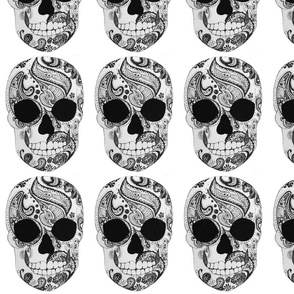 Paisley Skull on White