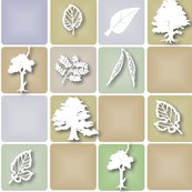 Rrshadowed_tree_and_leaf_shop_thumb