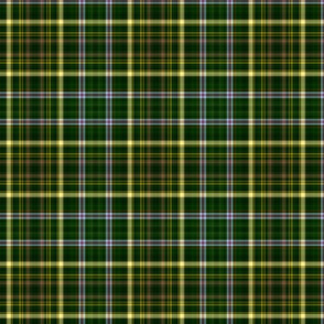 cookie_green plaid