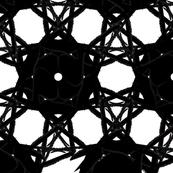 Black & White Spiderweb