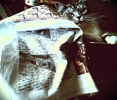 Here Kitty,Kitty(sepia)