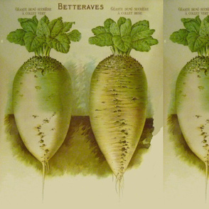 White French Beets pillow