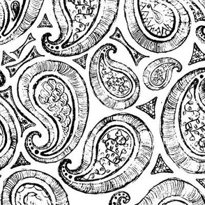White_and_Black_Paisley