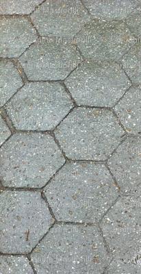 Cobblestones in the Rain