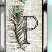 Palmerclr_shop_thumb