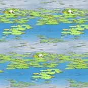 Rrrwaterlilyhalfbrick_shop_thumb