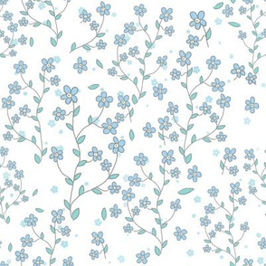 forget-me-nots on white