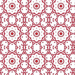 Coral Kaleidoscope
