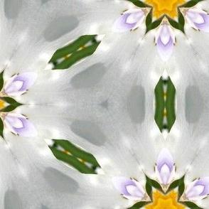 tiling_Iris_1