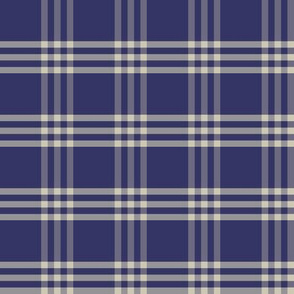 Plaid 1 - denim