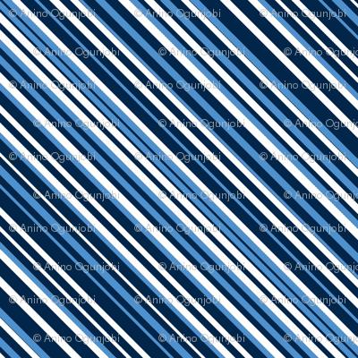 diagonal stripe_carlos_ navy, blue, white