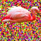 Rrgraffitiflamingo_shop_thumb