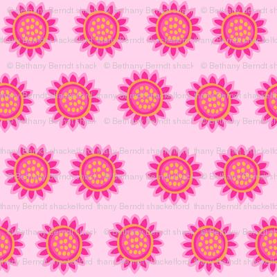Zig Zag Pet Party pink sunflowers