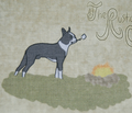 Rrrrscampscenec_comment_208009_thumb