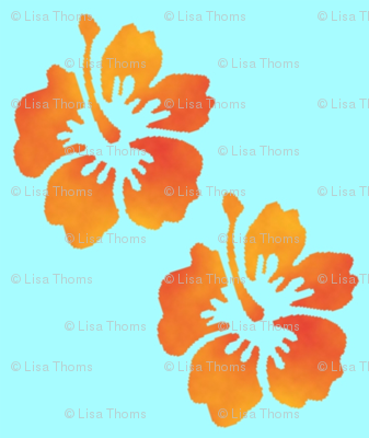 Coordinating Hibiscus Turquoise Background