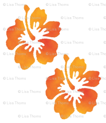 Coordinating Hibiscus White Background