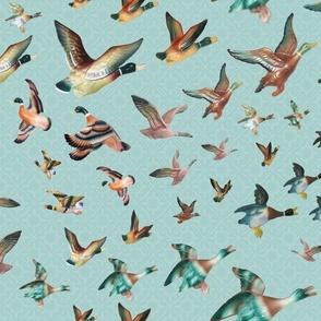 flying_ducks_on_blue