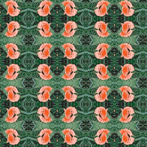 poppy_orange