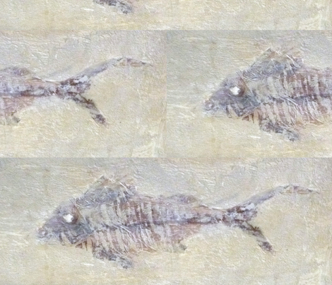 fossilised Fish Sticks fabric by susaninparis on Spoonflower - custom fabric
