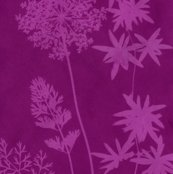 Rrrrsolar-print-flowers3redviolet_shop_thumb
