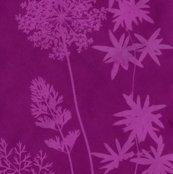 Rrrrsolar-print-flowers3redviolet_shop_thumb