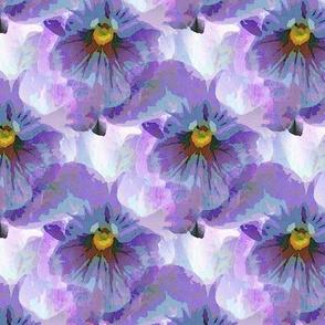 Blue violet pansy (m)