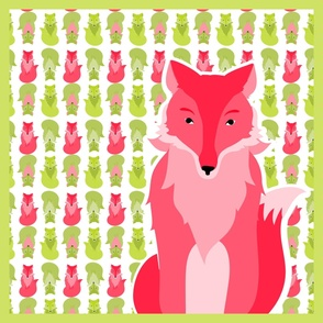 fox_coordinates_7